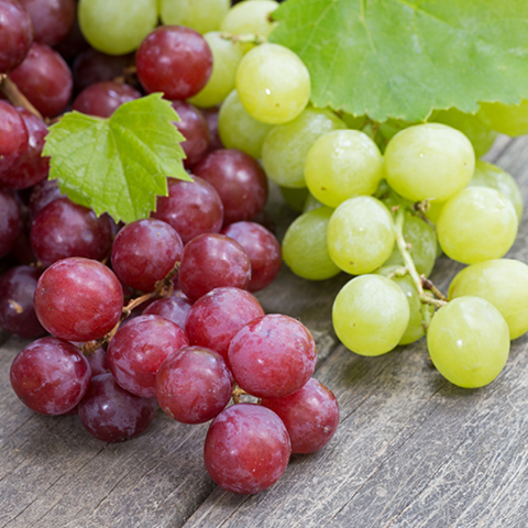 Seedless Red or Green Grapes